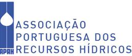 Pedro Bettencourt eleito Vice-Presidente da APRH