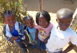NEMUS ganha concurso internacional para a realização de Estudo de Impacte Ambiental e Social no Malawi