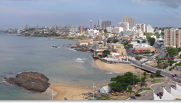 Nemus ganha novo trabalho no Brasil
