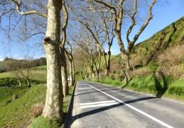 EIA para melhoria da acessibilidade na região das Furnas, Açores