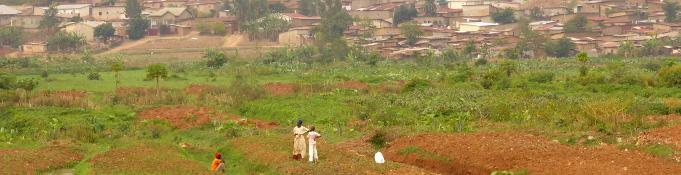 An ambitious forest restauration plan in Rwanda has been kicked-off by Nemus